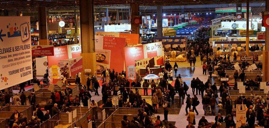 To start the year, here's a quick tour of the capital's trade shows...